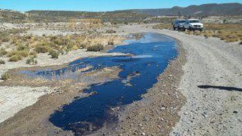 YPF será sancionada por la pérdida que afectó a más de 100 hectáreas