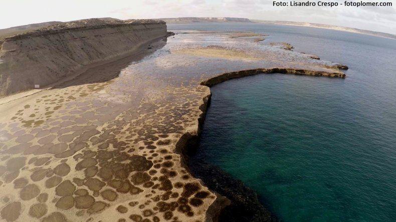 Península Valdés fue visitada por más de 83 mil personas en enero