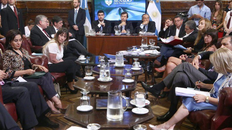 Mañana se reunirá la Comisión Bicameral y deberá definir si otorga dictamen de mayoría a la iniciativa.