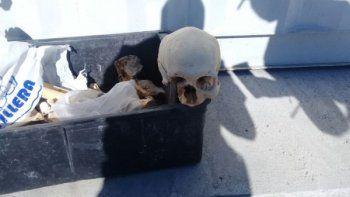hallaron restos oseos en la planta de tratamiento del girsu