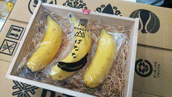 tras la sandia cuadrada, japon produce una banana que se come con cascara