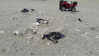 paseaban en cuatriciclo por la costa y encontraron 20 esqueletos humanos