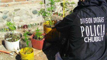 en un mes se secuestraron 6 kgs de marihuana y 3 grs de cocaina