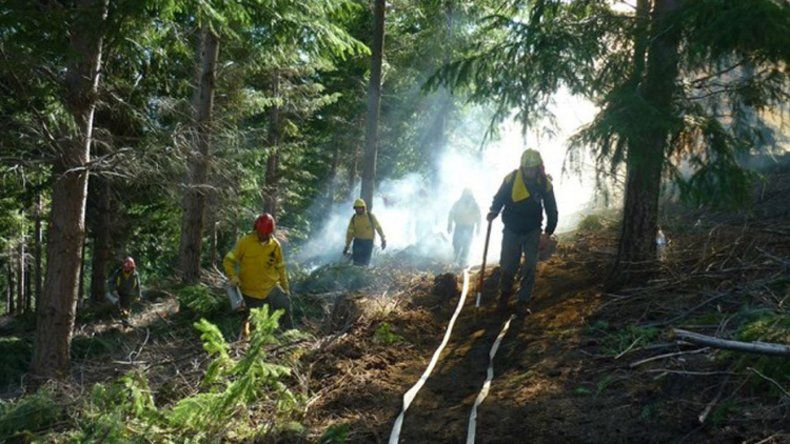Un piromaníaco provocó al menos 5 incendios en El Bolsón