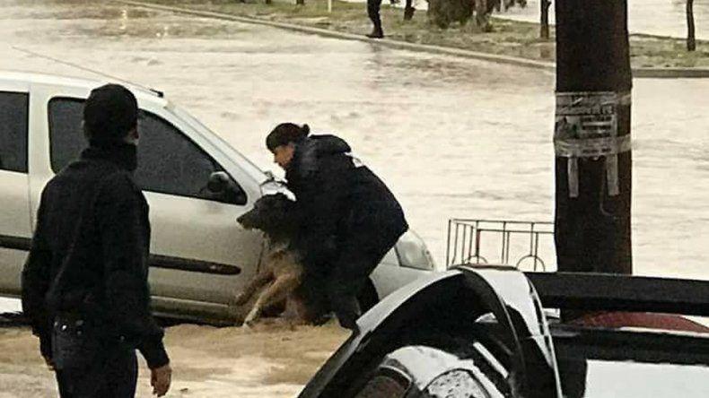 La Policía destaca el compromiso del personal que intervino en la catástrofe