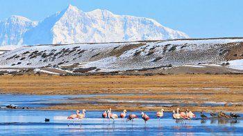 El proyecto del gobierno de Cambiemos para ampliar el Parque Nacional Patagonia, ubicado al sur del Lago Buenos Aires y cercano a las altas cumbres, reactivó una polémica que comenzó a instalarse a fines de 2017.