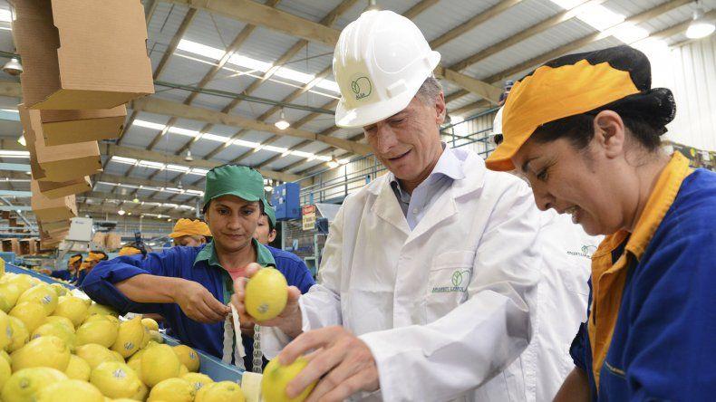 Mauricio Macri ayer en Tucumán durante el embarque de la primera exportación de limones a Estados Unidos desde 2001.