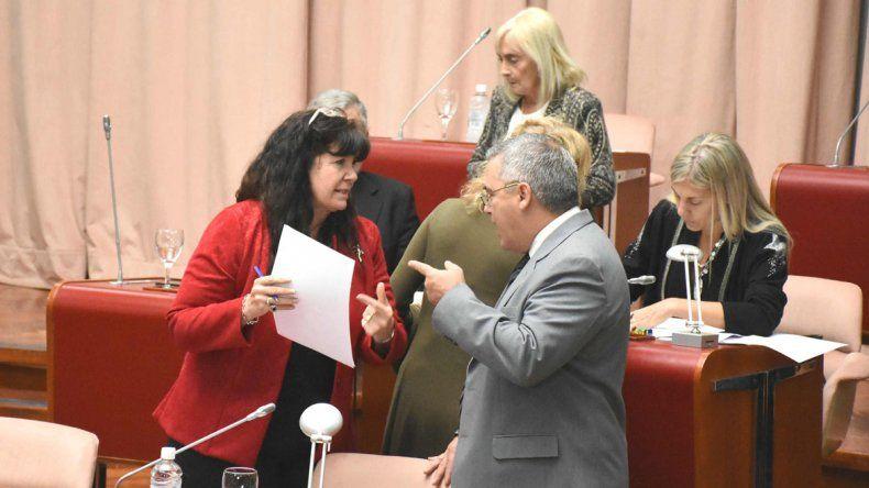 Desde la Legislatura
