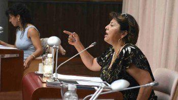 Están vulnerando los derechos para que ganen los amigos del Presidente, acusó la diputada Navarro.