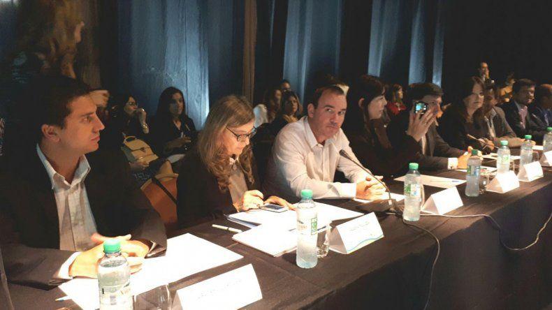 La Patagonia reclamó ante el Consejo Federal de Turismo la reincorporación de vuelos