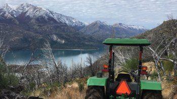 PAE y la Asociación de Amigos de la Patagonia plantaron más de 4 mil cipreses para recuperar el bosque nativo de Cholila.