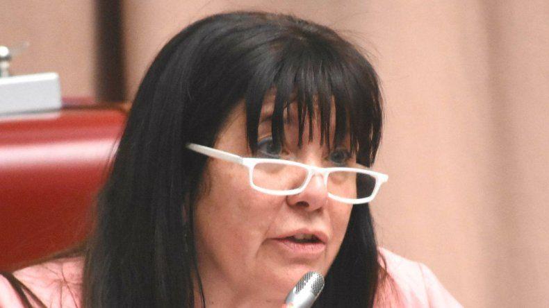 Dufour reiteró un pedido de informes sobre tierras en Cholila