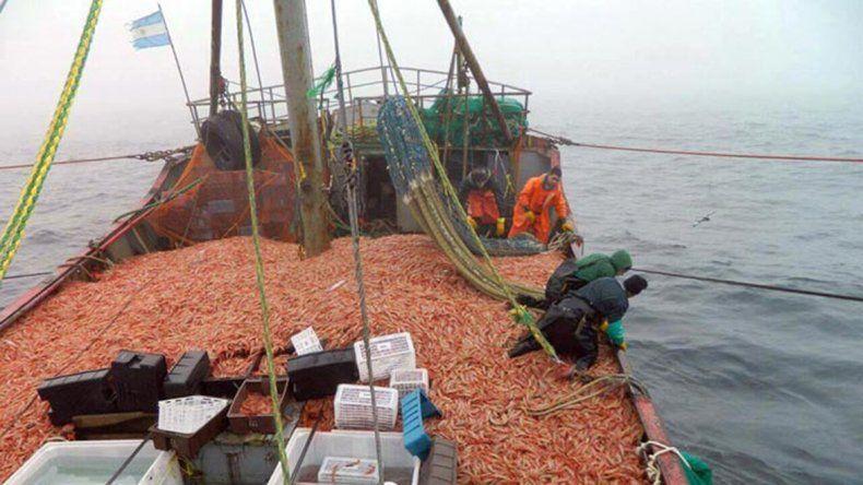 La sobreexplotación de la captura de langostinos preocupa a los pesqueros de Chubut.