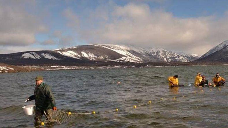 Pesca Continental realiza controles en lagos y ríos