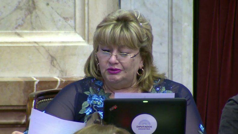 La diputada Ana Llanos pidió en el Congreso  que no se produzcan recortes en la Patagonia