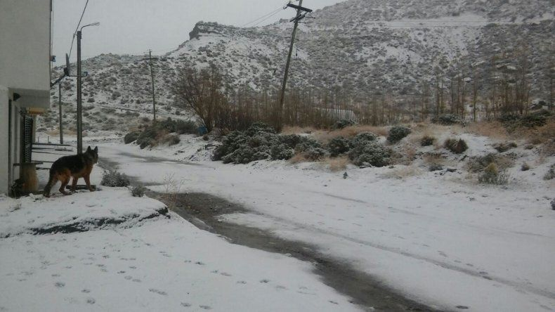 La zona alta de Kilómetro 3 registró una copiosa nevada.