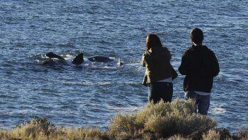 Alta ocupación hotelera en Chubut durante el fin de semana largo