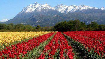 Trevelin nominado a ser una de las 7 Maravillas Naturales Argentinas