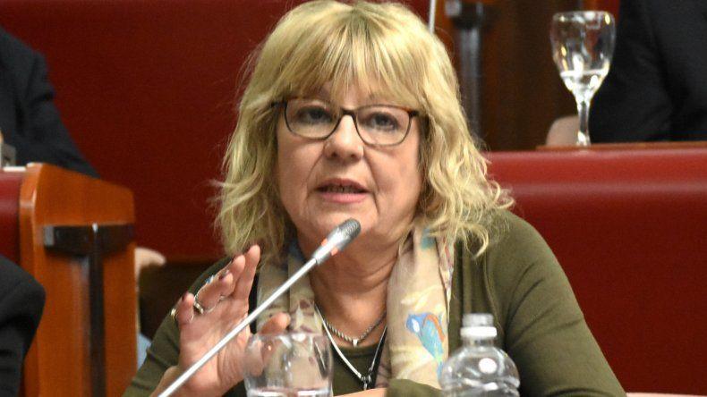 Diputados de Chubut interceden por las universidades públicas