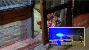 escapaba con cortes de carnes que habia robado en una carniceria