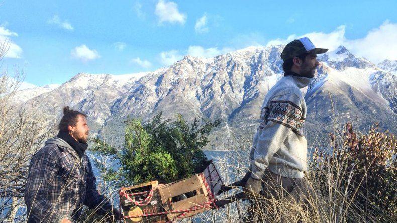 PAE y la Asociación de Amigos de la Patagonia trabajan en la recuperación de bosques