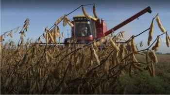 La sequía que afectó a las exportaciones de granos incidió con fuerza en la caída del PBI.