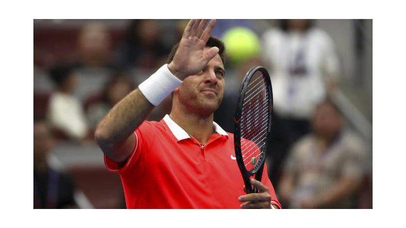 Del Potro perdió la final del ATP 500 de Beijing