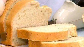 Pan de cucarachas: el alimento del futuro
