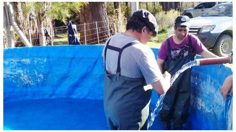 Provincia fortalece el trabajo en pisciculturas rurales