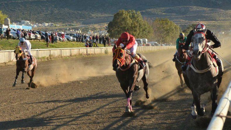Se realizarán hoy ocho carreras en el Hipódromo Eduardo Justo Napolitani.