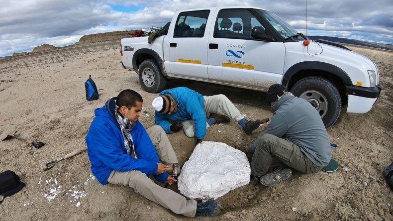 El trabajo de los paleontólogos en terreno.
