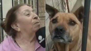 una anciana acompanada de su perro ahuyento a un ladron