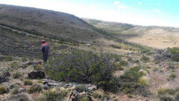 En una zona de mesetas, hondonadas y cañadones fueron hallados numerosos troncos de árboles petrificados, lo que indicaría que hace millones de años hubo un bosque de grandes extensiones.