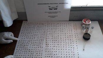 Gendarmería secuestró 500 semillas de marihuana