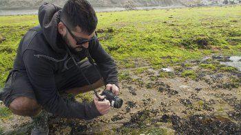 En Rada Tilly ofrecerán una visita guiada a Punta Marqués para disfrutar de la fotografía y la naturaleza.