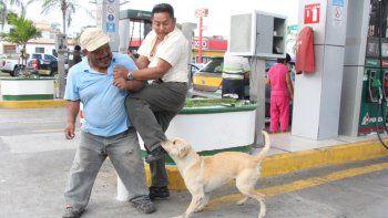 un perro salvo a un hombre en un asalto a una estacion de servicio