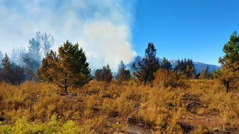Los incendios forestales en la cordillera están contenidos
