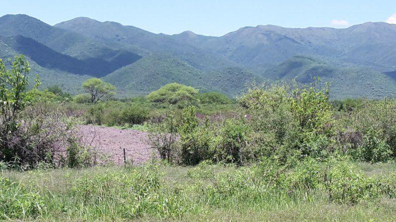 Nueva área protegida en la capital salteña
