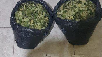 Viajaba con hojas de coca