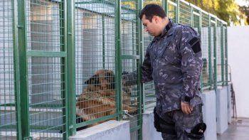 Aporte millonario para la División Canes de la Policía del Chubut