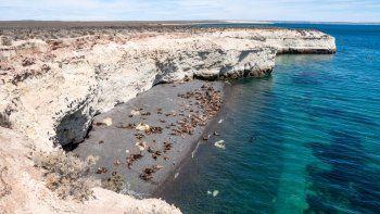 Área Natural Protegida de Península Valdés.