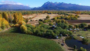buscan fortalecer la ruta  del vino en neuquen