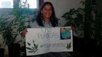 devolvieron plantas de cannabis a abuela que cultiva para su nieto