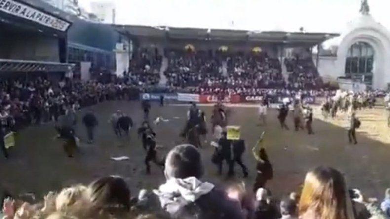 Un grupo de veganos invadió una exposición y los corrieron con los caballos