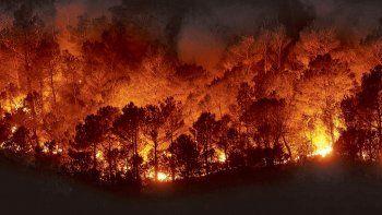 el amazonas arde hace mas de 15 dias y se consumen grandes hectareas de selva