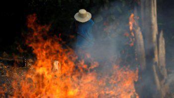 imagenes lamentables del incendio en el amazonas