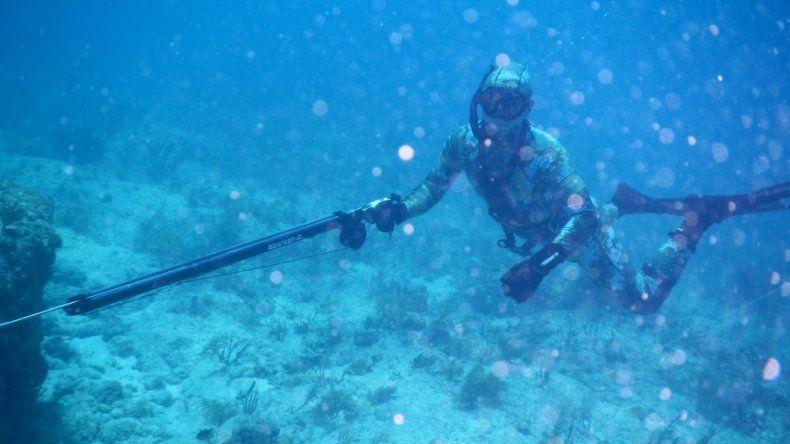 Náutico YPF y Neptuno impulsan