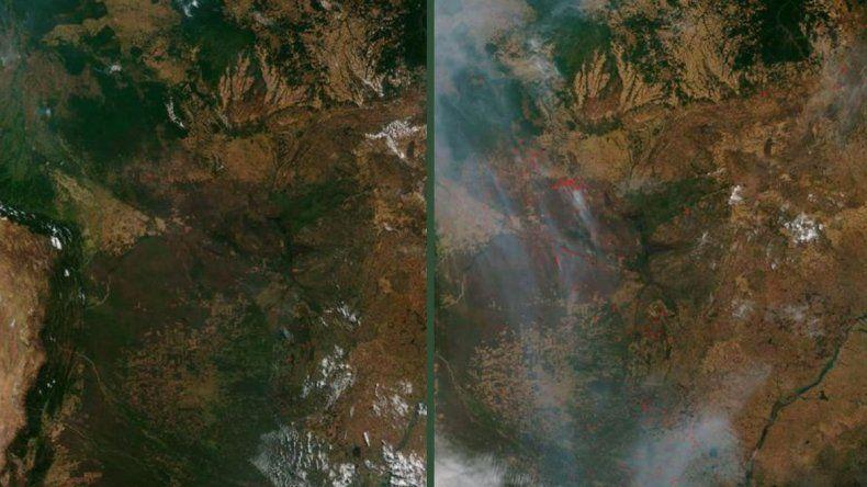 El antes y el después de los incendios en Amazonas