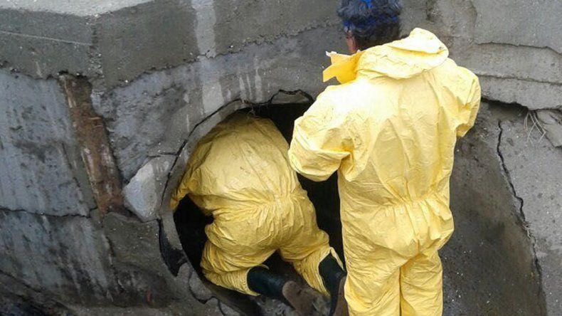 Personal municipal realiza un mantenimiento continuo de los pluviales.