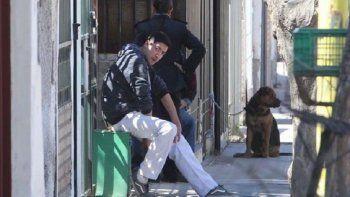 un rottweiler ataco y mato a su duena de 91 anos